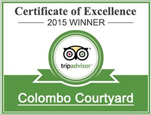 TripAdvisor Certificate of excellence for City Hotels